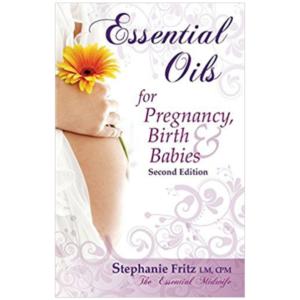 The Mini Essentials Guide Digital Download The Essential